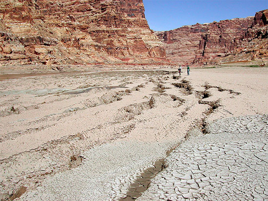 Sediment Deposits at Upper Colorado RIver Arm of Lake Powell Dewatering